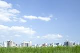 草原と街並み