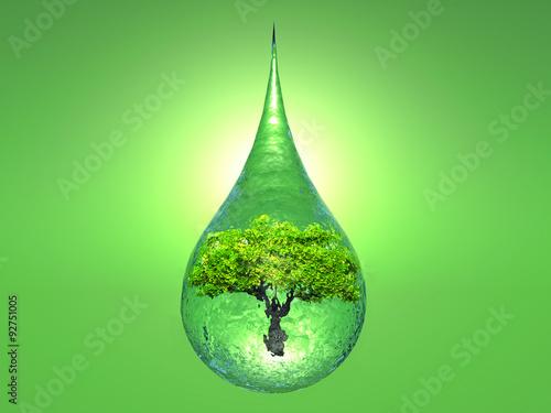 Plakat biosphere