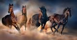 Fototapety Horse herd run in desert sand storm against dramatic sky