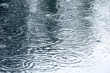 Fototapety rain drops background