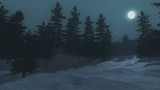 Nighttime view of the snow-covered spruce forest under full moon. Realistic three dimensional animation.