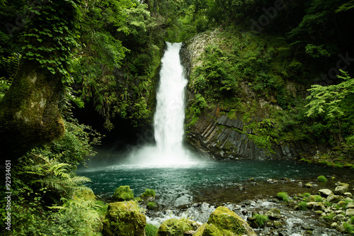 Lush green waterfall in Minami Izu, a day trip away from Tokyo for some nature a Poster