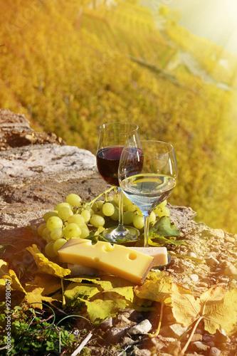 Fotobehang Planten Wine and grapes. Lavaux, Switzerland