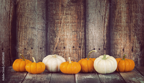 Mini pumpkins in a row against rustic wooden background
