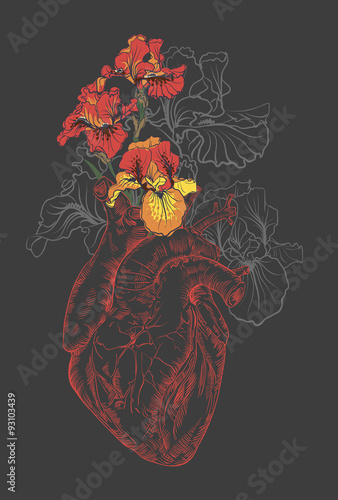 drawing Human heart with flowers - 93103439