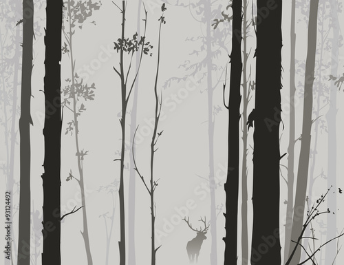 silhouette of the forest with deer 2 - 93124492