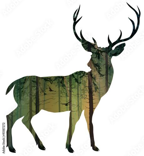 deer - 93187272