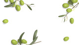 olive branch with drop of oil white background - 93195050