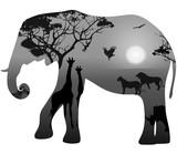 Elephant with silhouettes of animals savanna