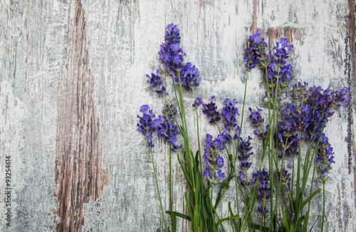Panel Szklany lavender flowers