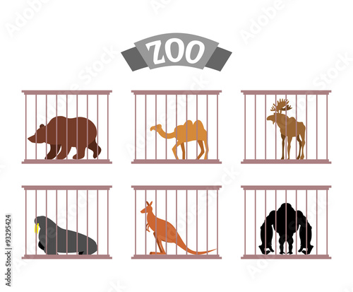 Fotobehang Zoo Zoo. Collection of wild animals in cages. Beasts behind bars. Be