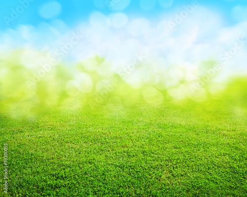 grass background Poster