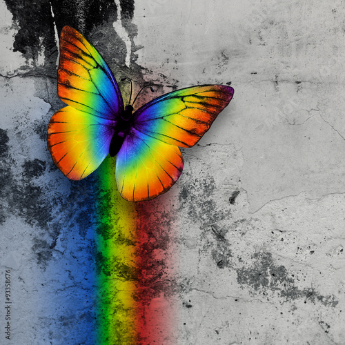 rainbow butterfly - 93358676