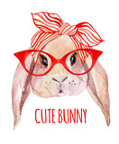 Fototapety Rabbit head in glasses
