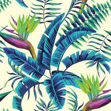Peinture tropicale exotique fond transparent