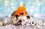 Happy New Year 2016 - Fine Art prints