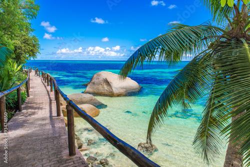 obraz lub plakat Path at paradise coast