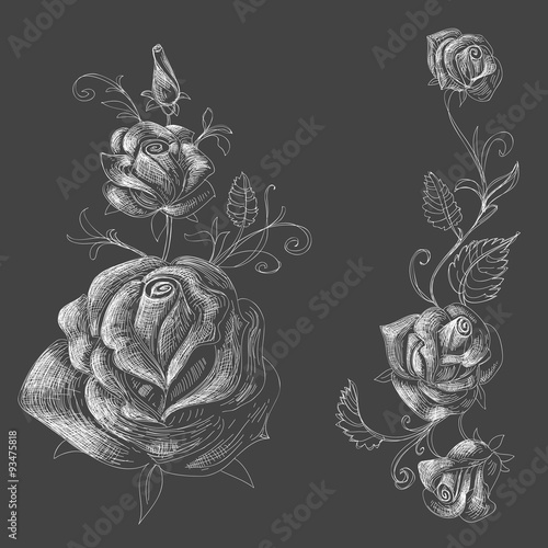 Roses design elements, black background - 93475818