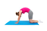 Woman doing gymnastics - cat's arched back - 93482811