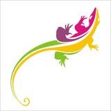 lizard rainbow color