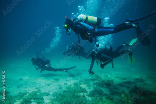 obraz lub plakat Four divers underwater