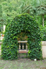 beautiful green arch with decorative tree at the hotel.