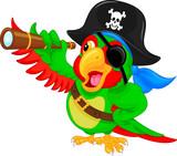 Pirate Parrot Cartoon Wall Sticker