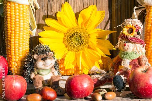 Herbst Dekoration Stock photo and royaltyfree images o