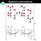 Hyaluronic acid molecule poster
