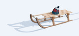 Wooden sled and hat on snow