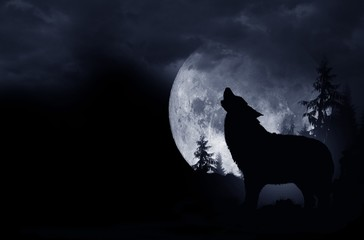 Howling Wolf Background