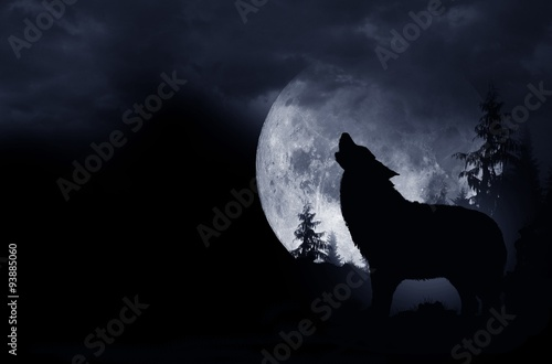 Howling Wolf Background Poster
