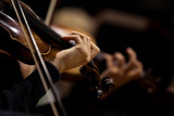 The hands of violinists in a Symphony orchestra