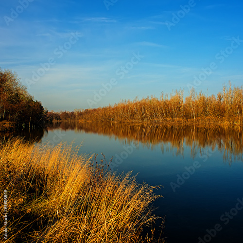 Plakat Autumn and river