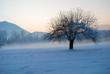 The beautiful winter sunsets