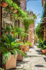 Podziemiu urządzone w małym miasteczku w Włochy, Umbria