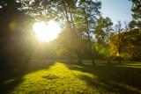 Sonnenuntergang im Park und leuchtendes Herz