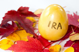 Gold egg of an IRA retirement account in the fall poster