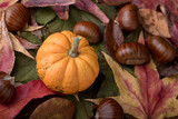 small decorative pumpkin and chestnut on red and green leaves