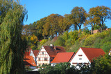 grünes havelberg