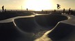 Skateboarding in Venice Beach - 94237857