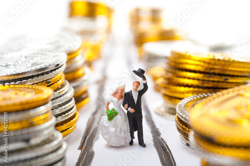 お金に囲まれている新婚 Poster