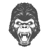 Gorilla head illustration