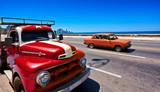 Fototapety Oldtier in Havana Kuba