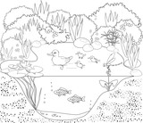 Coloring duck pond