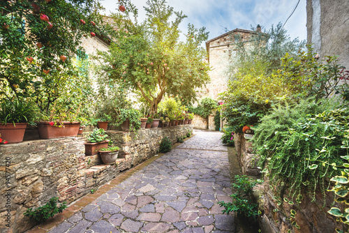 Italian garden in the village in the old Tuscany