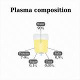 Composition of blood plasma. Infographics. Vector illustration