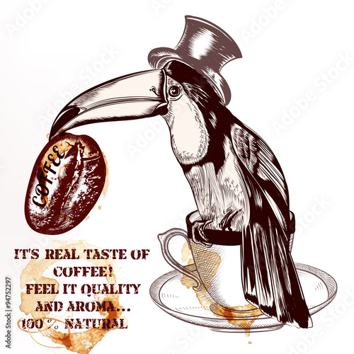 Coffee vector background or poster with hand drawn toucan bird h