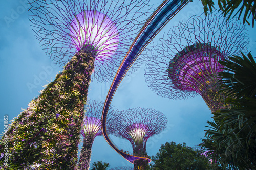 Poster Garden by the bay, SINGAPORE OCTOBER 11, 2015: twilight scene of