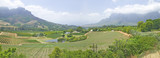 Panoramic view of Stellenbosch wine route and valley of vineyards, outside of  Cape Town, South Africa
